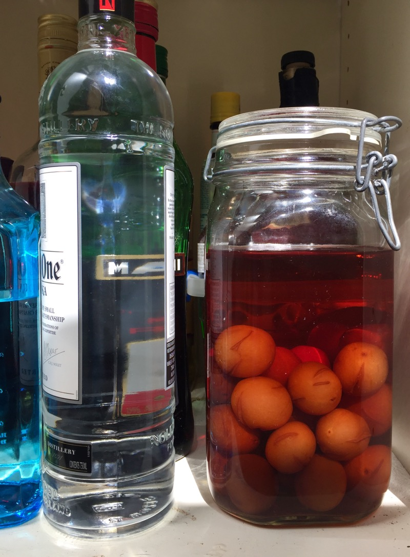 homemade plum brandy