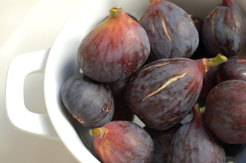 fall fig favorites